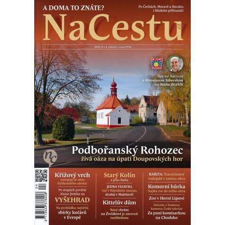 NACESTU 4/2020